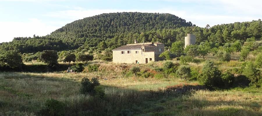 DSC01329_Vallseca_Catari